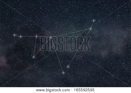 Capricorn Constellation. Zodiac Sign Capricorn Constellation Lines