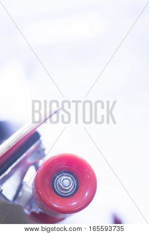 Skateboard In Skate Store