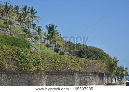 Palm trees and gardens on top of a hill in the port of Veracruz