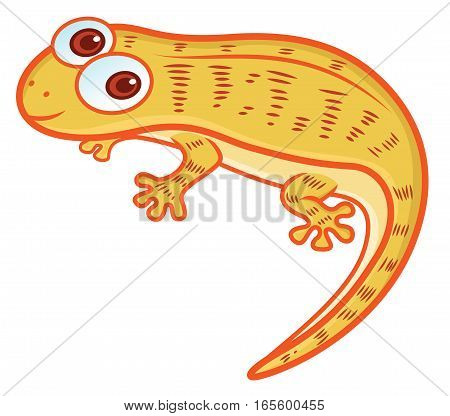 House Lizard Cartoon Illustration Isolated on White