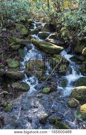 Mossy Waterfall in Great Smoky Mountains Wilderness