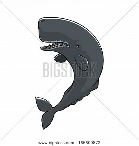 Cachalot isolated icon. Vector sperm whale mammal fish. Symbol of toothed whale with massive big head for fishing sign or fishery industry badge or emblem