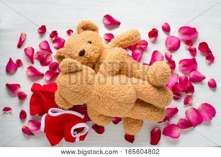 Funny Picture Of A Love Making Teddy Bear Couple On Roses. Valentine Background.