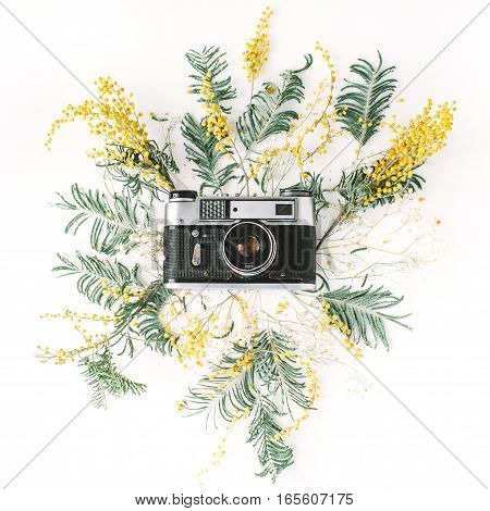 Vintage retro photo camera yellow acacia flowers and green brunches. Flat lay top view