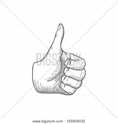 Hand giving a thumbs up Vector illustration