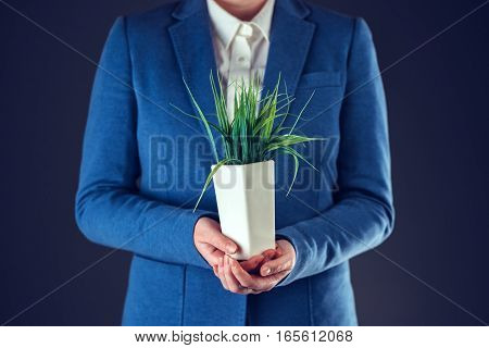 Businesswoman with plant pot in the office