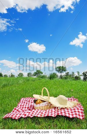 Picnic on Meadow at Sunny Day
