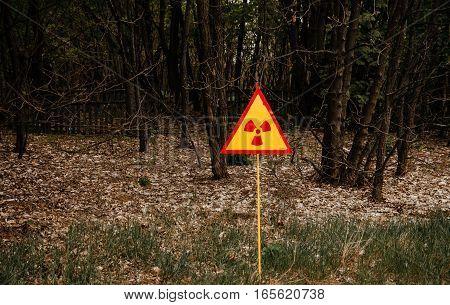 Radiation Polution Sign Background Dead Forest On Chernobyl, Ukraine.