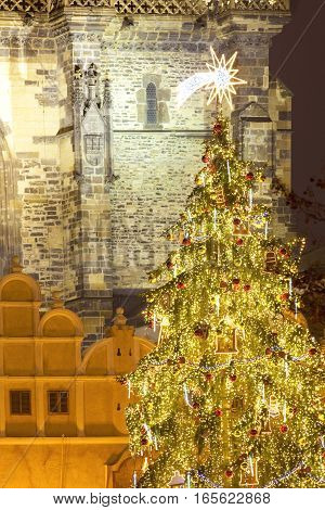 Czech Republic Prague - Christmas Tree at the Old Town Square