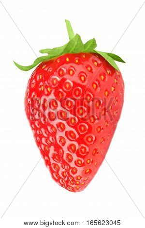 One Strawberry On A White Background Isolated
