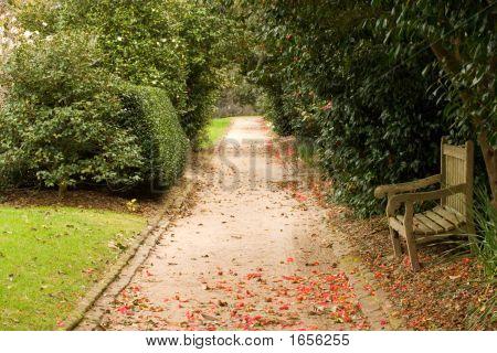 Secret Alley