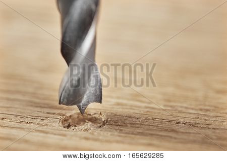 neww vetal drill bit make hole in a clean wooden oak plank