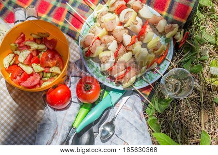 outside picnic with vegetables and chicken skewers