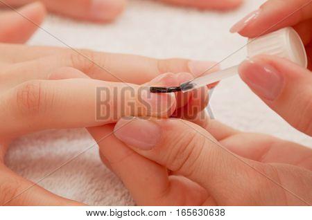 Manicure Treatment - Applying Base Coat