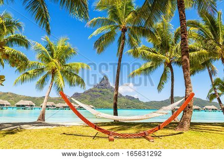 Empty hammock between palm trees. Holiday and vacation concept