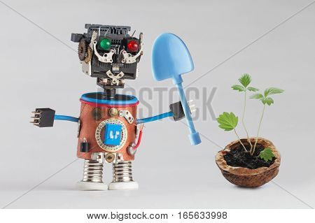 Gardener worker blue shovel and green sprouts with leaves in walnut shell. Macro view growing plant. Fun robot plastic head colored green red eyes electric accessories. Gray background. Eco conceptual photo