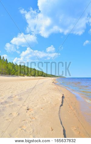 Beach on Ladoga lake at sunny morning the Karelian Isthmus Russia.