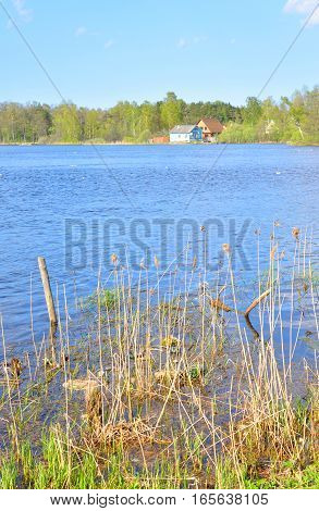 View of Lake Vuoksa with forest and rural houses the Karelian Isthmus Russia.