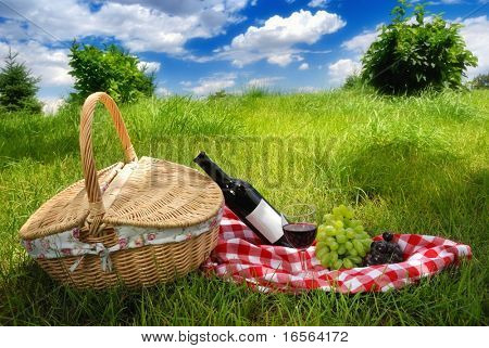 Outdoor picnic at sunny day.
