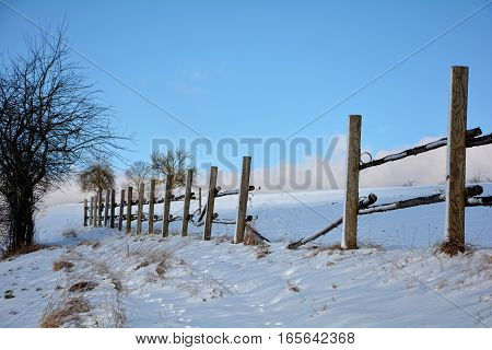 Wooden fence in winter with snow and blue sky, tree on the left
