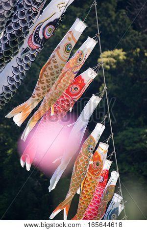 Carp streamer in Sagamigawa river, Kangawa, Japan.