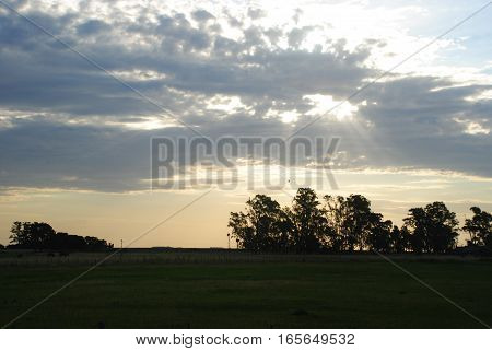 Field at La Pampa, Argentina. Sky with clouds at the evening, with sunny rays through it.