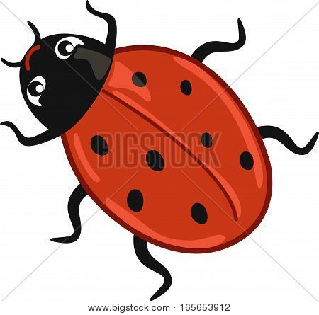 Cute red ladybug cartoon on white background