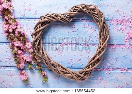 Decorative heart and pink sakura flowers on blue wooden background. Selective focus. Flat lay.