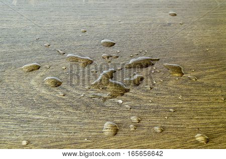 The kitchen spilled water on the floor.
