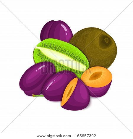 Composition of juicy plumand kiwi. Ripe vector kiwifruit and plum fruits whole and slice appetizing looking. Group of tasty fruits for design packaging of juice, breakfast healthy eating vegan