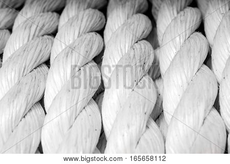 Rope coiled up in circles on a tall ship
