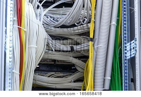 Large group of lilac utp Internet cables in the Data Center