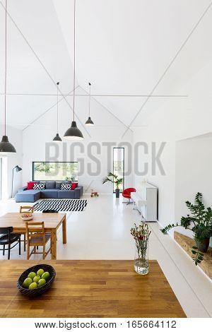 New Design Open Floor Apartment