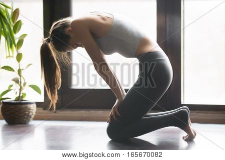 Young attractive woman practicing yoga, sitting in Upward Abdominal Lock exercise, Uddiyana Bandha pose, working out, wearing sportswear, grey pants, bra, indoor full length, home interior background