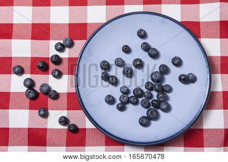 Bluberries on a blue plate and a red checkered table cloth beneath it.