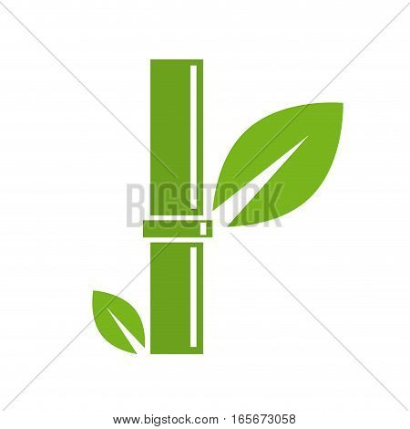Vector sign abstract green bambou, isolated illustration