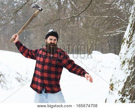 Handsome Brutal Lumberjack Cuts Tree