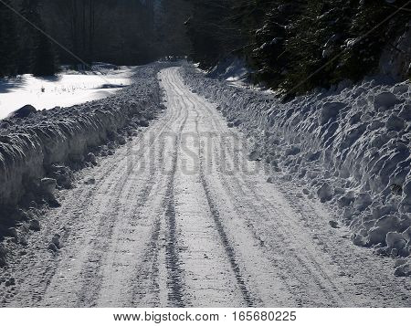 Snow calamity on forest road , forest road in the winter