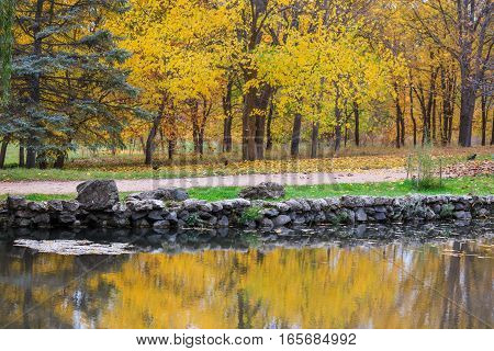 Scenic autumnal park with yellow trees near the lake reflection in water surface golden leaves on the ground and three black ravens at a distance.