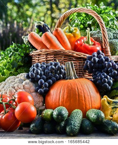 Variety Of Fresh Organic Vegetables And Fruits In The Garden