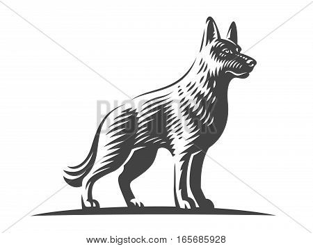 Shepherd dog - vector illustration on white background