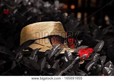 The picture backgroundtexture of the straw white hat with red glasses spectacles on the bush in dark black tones with red flowers