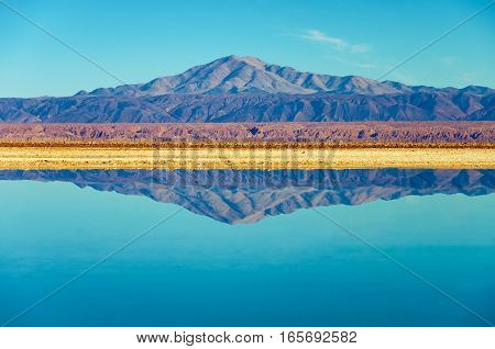 Perfect mirror like reflection in Lake Chaxa near San Pedro de Atacama Chile