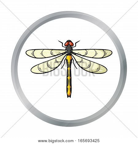 Dragonfly icon in cartoon design isolated on white background. Insects symbol stock vector illustration.