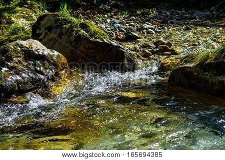 Mountain Creek with Fast Flowing Clear Water