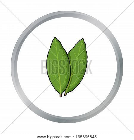 Laurus icon in cartoon style isolated on white background. Herb an spices symbol vector illustration.