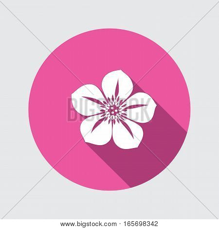 Petunia flower icons. Floral symbol. Round circle flat icon with long shadow. Vector