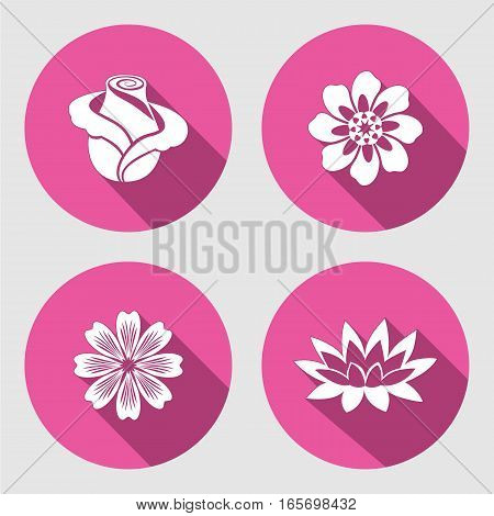 Flower icons set. Rose, chamomile, blue poppy, daisy, gowan, lily. Floral symbols. Round circle flat sign with long shadow. Vector
