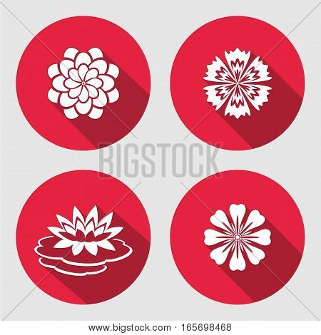Flower icons set. Lily, blue poppy, chamomile daisy gowan. Floral symbols. Round circle flat sign with long shadow. Vector