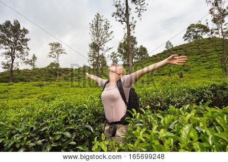 Active caucasian blonde woman, arms raised to sky, enjoing fresh air and pristine nature while tracking among tea plantaitons near Ella, Sri Lanka. Bacpecking outdoors tourist adventure.